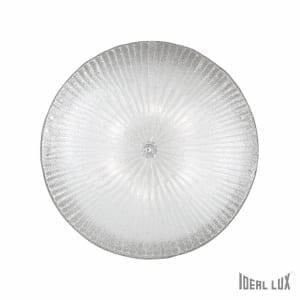 Shell PL6 Trasparente